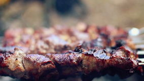 Meat grilled on skewers. Closeup. Cooking shish kebab. Food for barbecue party stock footage