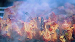 Meat grilled on wood coal outdoor. Closeup. Smoke over hot shish kebab stock video