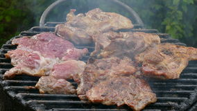 Meat grilling, barbecue stock video