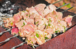 Meat grilling over charcoal Royalty Free Stock Images