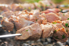 Meat grilling over charcoal Stock Photos