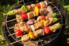 Meat grilling over the coals on a portable barbecue Royalty Free Stock Photo