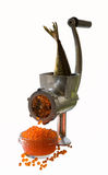 Meat grinder and caviar. A meat grinder with a fish making caviar Royalty Free Stock Photography