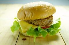 Meat hamberger Stock Photos