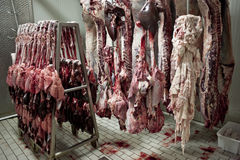 Meat Industry 18 Stock Photo