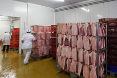 Meat Industry processing. Inside of Meat Industry processing pork Stock Image