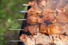 Meat kebab. From pork cooking on skewers Royalty Free Stock Photo