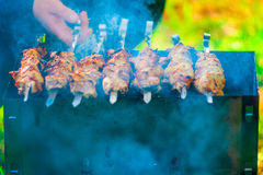 Meat kebab in the brazier Royalty Free Stock Images