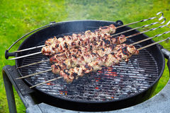 Meat kebab skewers Stock Photos