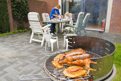 Meat and kebabs on barbecue. Royalty Free Stock Images