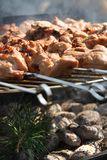 Meat kebabs on bbq Royalty Free Stock Photos