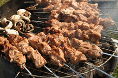 Meat kebabs shashlyk on a bbq. Meat kebabs shashlyk and mushrooms on a barbecue clouse up Royalty Free Stock Image