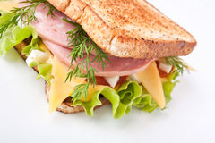 Meat, lettuce and cheese sandwich Royalty Free Stock Photography