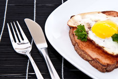 Meat loaf with fried egg Stock Photography