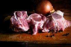 Meat for meat dishes stock photography