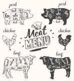 Meat menu pork chicken beef cuts hand drawn vector Stock Images