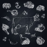 Meat Monochrome Hand Drawn Set. With cow and parts of beef on black chalkboard vector illustration Stock Photos