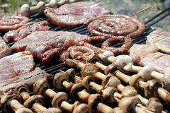 Meat and mushrooms on the barbecue.  Stock Image