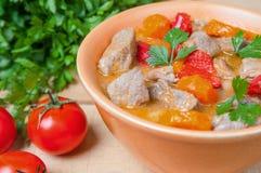Meat- och grönsakstew Royaltyfria Foton