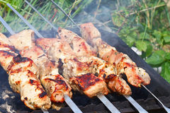 Meat On Skewers Stock Photos