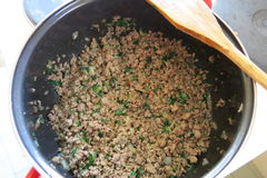 Meat. With onion and parsley Stock Image