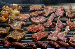 Meat and onions on a grill Royalty Free Stock Photography