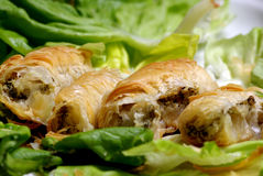 Meat filled pastry rolls Royalty Free Stock Photos