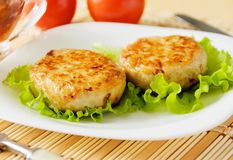 Meat patties on a white plate. Royalty Free Stock Photos