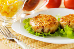 Meat patties on a white plate. Stock Images