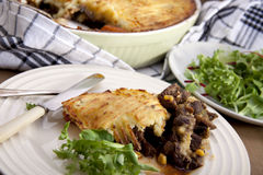 Meat pie. Stock Photos