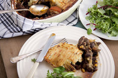 Meat pie. Stock Photography