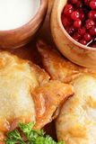 Meat pie with sour cream and cranberries Stock Photography
