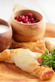 Meat pie with sour cream and cranberries Royalty Free Stock Photography
