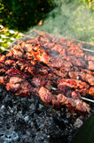 Meat pieces cooking on brazier Royalty Free Stock Image