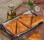 Meat pies samosas with ground beef Royalty Free Stock Photo