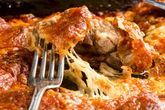 Meat pork baked with cheese Royalty Free Stock Photography