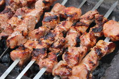 Meat porkis fried on the grill skewers at coals 20463 Royalty Free Stock Photos