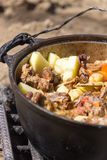 Meat with potatoes in a cauldron on fire Royalty Free Stock Photo