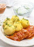 Meat with potatoes Royalty Free Stock Photo