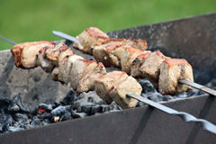 Meat prepared at the barbecue Royalty Free Stock Photo