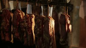 Meat Processing Factory stock footage