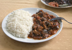 Meat with rice on a plate Royalty Free Stock Photos