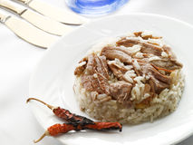 Meat and rice Royalty Free Stock Photo