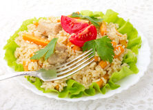 Meat with rice and vegetables Stock Photos
