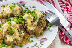 Meat rissoles Royalty Free Stock Photos