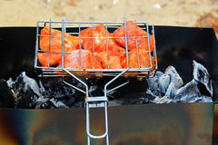 Meat roasted. In a lattice on a brazier with coals Royalty Free Stock Photo