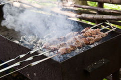 The meat is roasted on the grill. Mage pieces of meat roasted on a spit over charcoal. Barbecue stands on the lawn Royalty Free Stock Photo