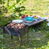 Meat roasted on skewers Stock Image
