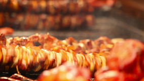 Meat roasts on the Fire: European national dish.  stock footage