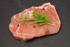 Meat with Rosemary and Mentha Stock Photo